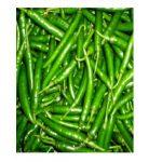 green chilli fin